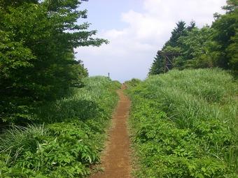 @明神ヶ岳10-6 015s-.jpg