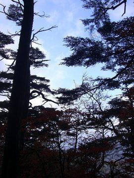 高原山 09 10-4 015s-.jpg