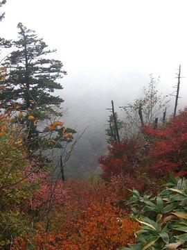 高原山 09 10-4 026s-.jpg