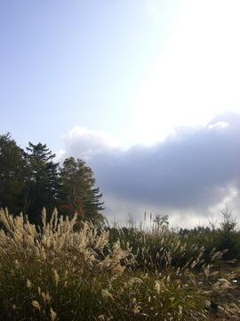 高原山 09 10-4 044s-.jpg