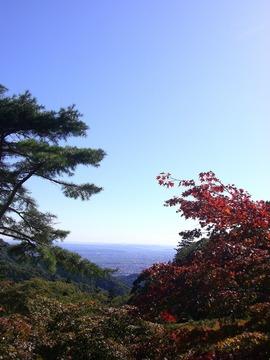 大山 09 11-3 010s-.jpg