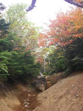 男体山 09 9-22 026s-.jpg