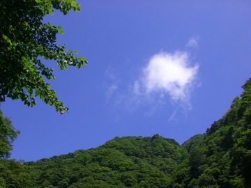 尾白川 09 7.20 011s-.jpg