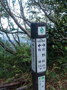 @伏野10-10 035s-.jpg